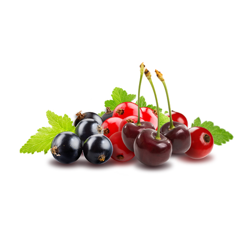 מיקס פירות יער